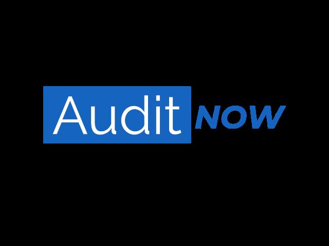 AuditNow logo